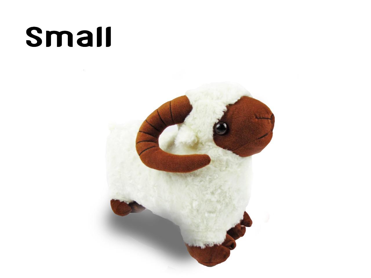 خروف العيد مقاس صغير